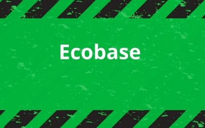 Ecobase: che cos'è e perché è vantaggioso sceglierla